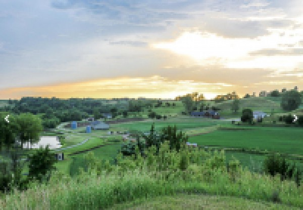 80 Acres With Custom Home
