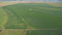 212.79 acre Timed Online Harrison County Iowa Land Auction